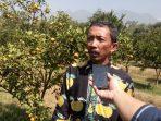 Sutopo Pengelola Taman Sain  Pertanian  (TSP) Peniliti Balitjestro Badan Penelitian dan Pengembangan pertanian (Balitbang)👆